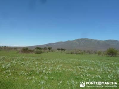 La pradera de la ermita de San Benito;belen viviente de buitrago;rutas senderismo cerca de madrid
